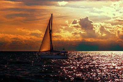 Photograph - Sailing Home by Mim White