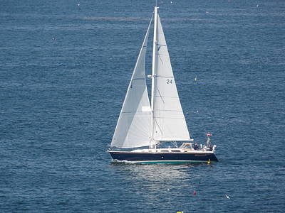 Photograph - Sailing In Maine by Catherine Gagne
