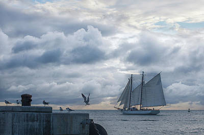 Photograph - Sailing In Paradise by Scott Meyer