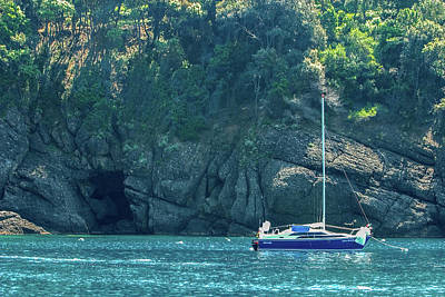 Photograph - Sailing In Portofino by Al Hurley