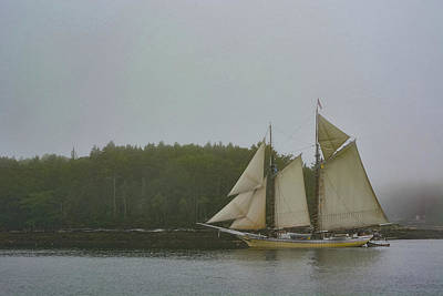Photograph - Sailing In The Mist by Jesse MacDonald