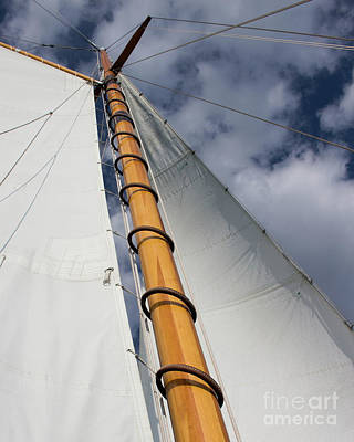 Photograph - Sailing Into The Clouds by Cheryl Del Toro