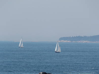 Photograph - Sailing On A Hazy Day by Catherine Gagne