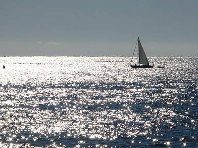 Photograph - Sailing On A Silver Sea by Bill Tomsa