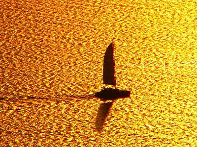 Art Print featuring the photograph Sailing On Gold by Ana Maria Edulescu