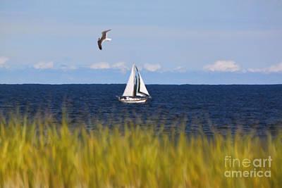 Photograph - Sailing On Long Beach Island by Jeff Breiman