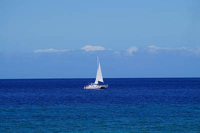 Photograph - Sailing On The Blue Ocean by Pamela Walton