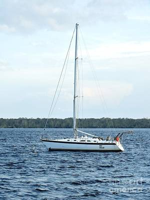 Photograph - Sailing On The St.john's River by Tim Townsend