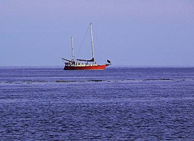 Photograph - Sailing On The West Coast Of Bc by Barbara St Jean
