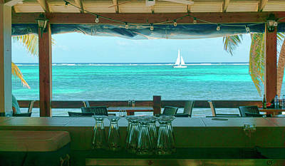 Photograph - Sailing Past A Bar Ambergris Caye, Belize by Waterdancer