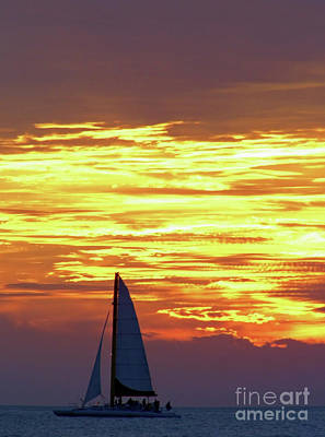 Photograph - Sailing Past The Sunset by D Hackett