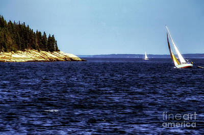 Penobscot Bay Photograph - Sailing Penobscoy Bay by Thomas R Fletcher