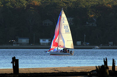 Photograph - Sailing Port Jefferson New York by Bob Savage