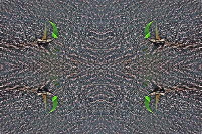 Boating Digital Art - Sailing Quad by Duncan Pearson