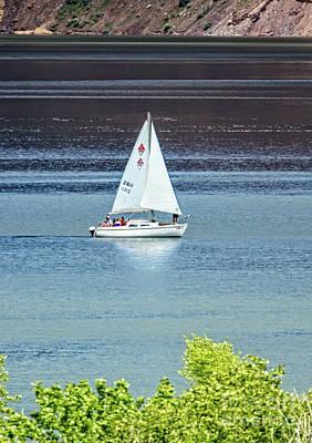 Photograph - Sailing by Robert Bales