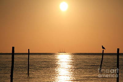Photograph - Sailing Ship In The Sunrise by Four Hands Art