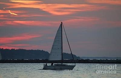 Bringing The Outdoors In - Sailing Sky by Douglas Sacha