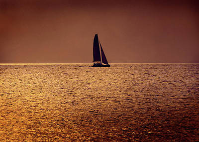 Photograph - Sailing by Steven Sparks