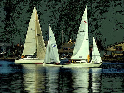 Photograph - Sailing The Harbor by David Patterson
