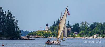 Photograph - Sailing The Harbor by Debbie Parker