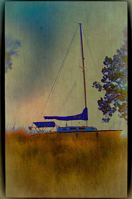 Digital Art - Sailing The Weeds by Bartz Johnson