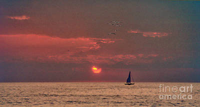 Photograph - Sailing With The Sunset  by David Zanzinger
