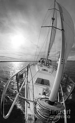 Photograph - Sailing Yacht Fate Beneteau 49 Black And White by Dustin K Ryan