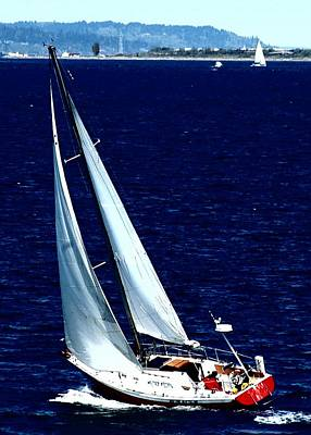 Mainsail Photograph - Sail'n by Lori Seaman