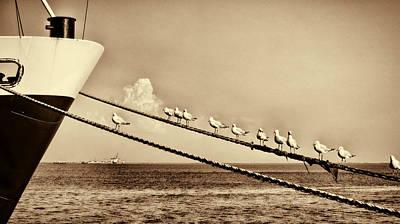 Sailors V2 Art Print by Douglas Barnard