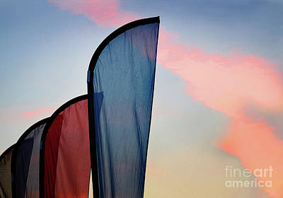Photograph - Sails At Sunset by Karen Adams
