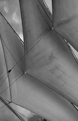 Photograph - Sails by David Shuler