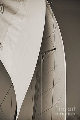 Sails Art Print by Dustin K Ryan