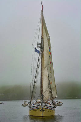 Photograph - Sails In The Mist by Jesse MacDonald