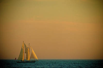 Sails Art Print by Sebastian Musial