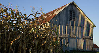 Photograph - Saint Augustine Barn by Dylan Punke