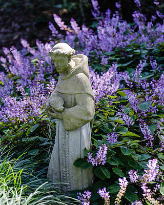 Photograph - Saint Francis In Lavender by Stephanie Maatta Smith