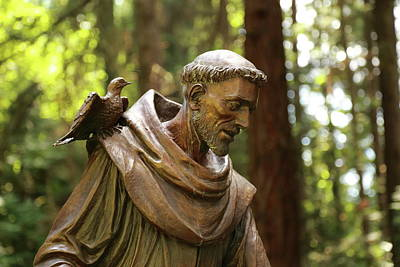 Photograph - Saint Francis Of Assisi by Scott Hill