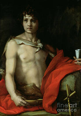 Youth Painting - Saint John The Baptist  by Andrea del Sarto