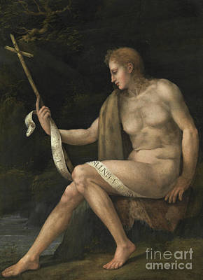Painting - Saint John The Baptist In The Wilderness  by Francesco Bacchiacca