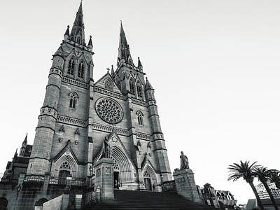 Bear Photography Rights Managed Images - Saint Marys Cathedral in Sydney, Australia Royalty-Free Image by Daniela Constantinescu