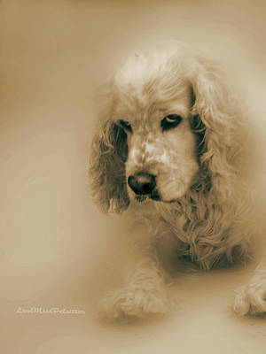 Digital Art - Saint Shaggy Art 6 by Miss Pet Sitter