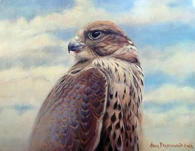 Wall Art - Painting - Saker Falcon - Ayra by Anna Franceova