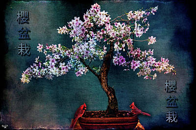 Photograph - Sakura Bonsai by Chris Lord