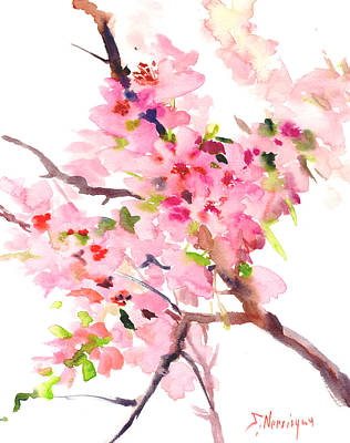Cherry Trees Drawing - Sakura Cherry Blossom by Suren Nersisyan