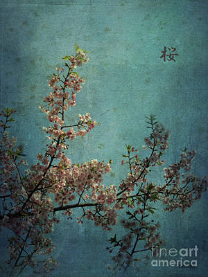 Photograph - Sakura by Eena Bo