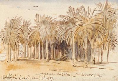 Drawing - Salahiyeh by Edward Lear