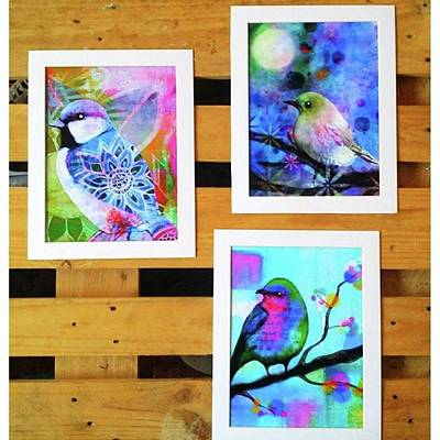Wall Art - Photograph - *sale* 3 11 X 14 In. Bird Prints With by Robin Mead