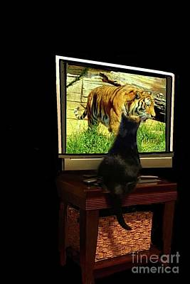 Digital Art - Salem And The Tiger by Janette Boyd