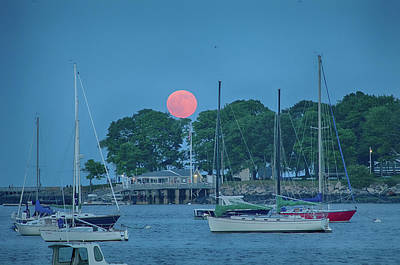 Photograph - Salem Willows With Full Moon by Jeff Folger