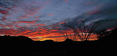 Photograph - Salero Sunset 16 by Tom Daniel